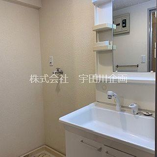 シャンプードレッサー付独立洗面台と洗濯機置き場のある洗面所