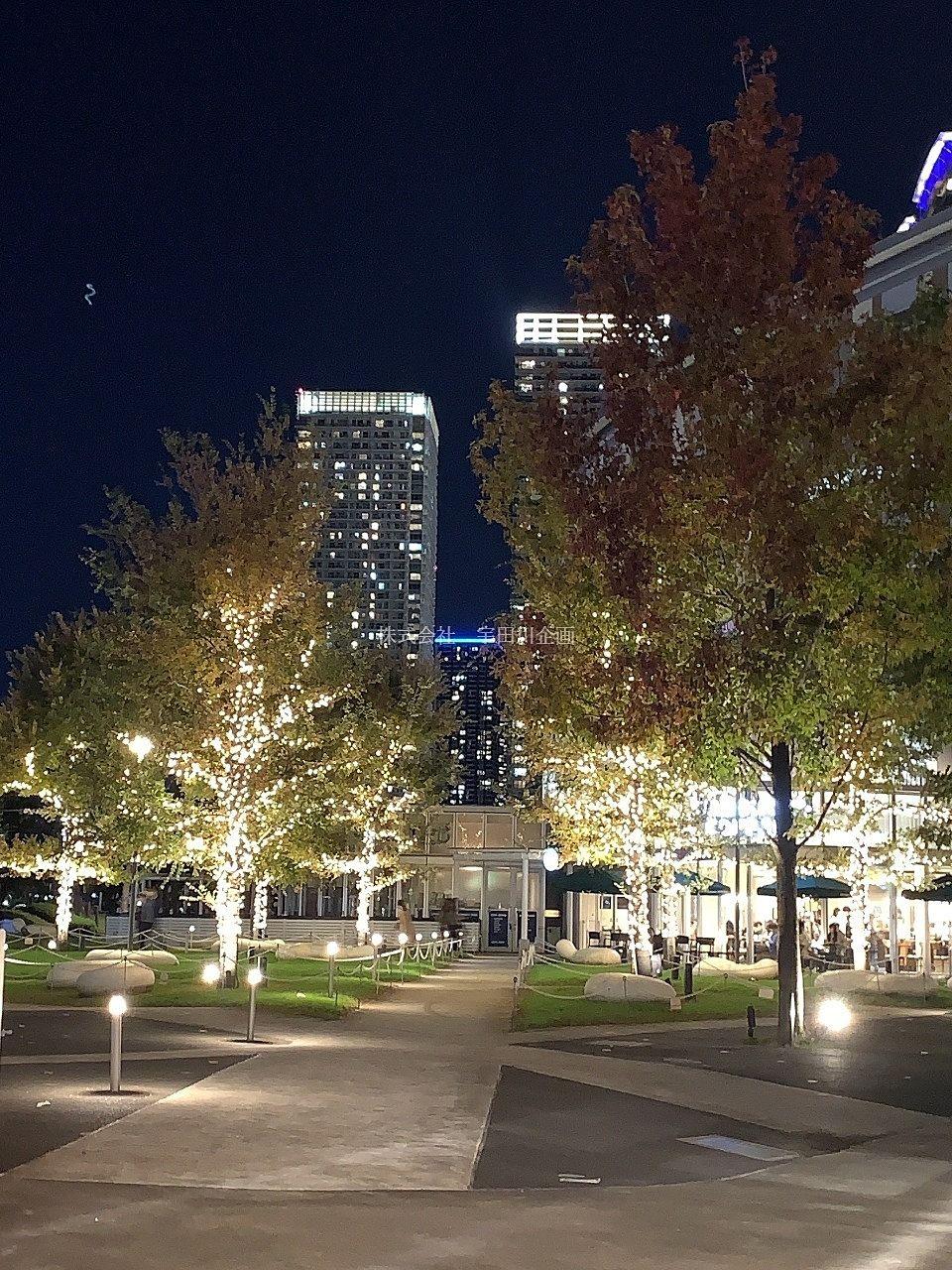 江戸川区周辺夜景スポットのご紹介