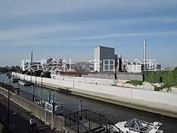 旧江戸川にある自然島